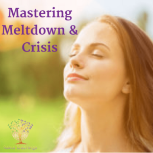 Mastering Meltdown And Crisis
