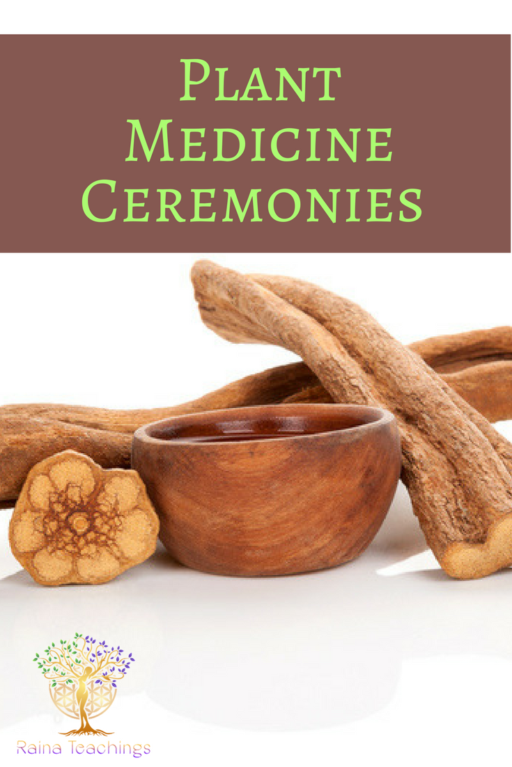 Advice and tips about seeking out plant medicine ceremonies | rainateachings #plantmedicine #ayahuasca #spiritualceremonies #alteredstates
