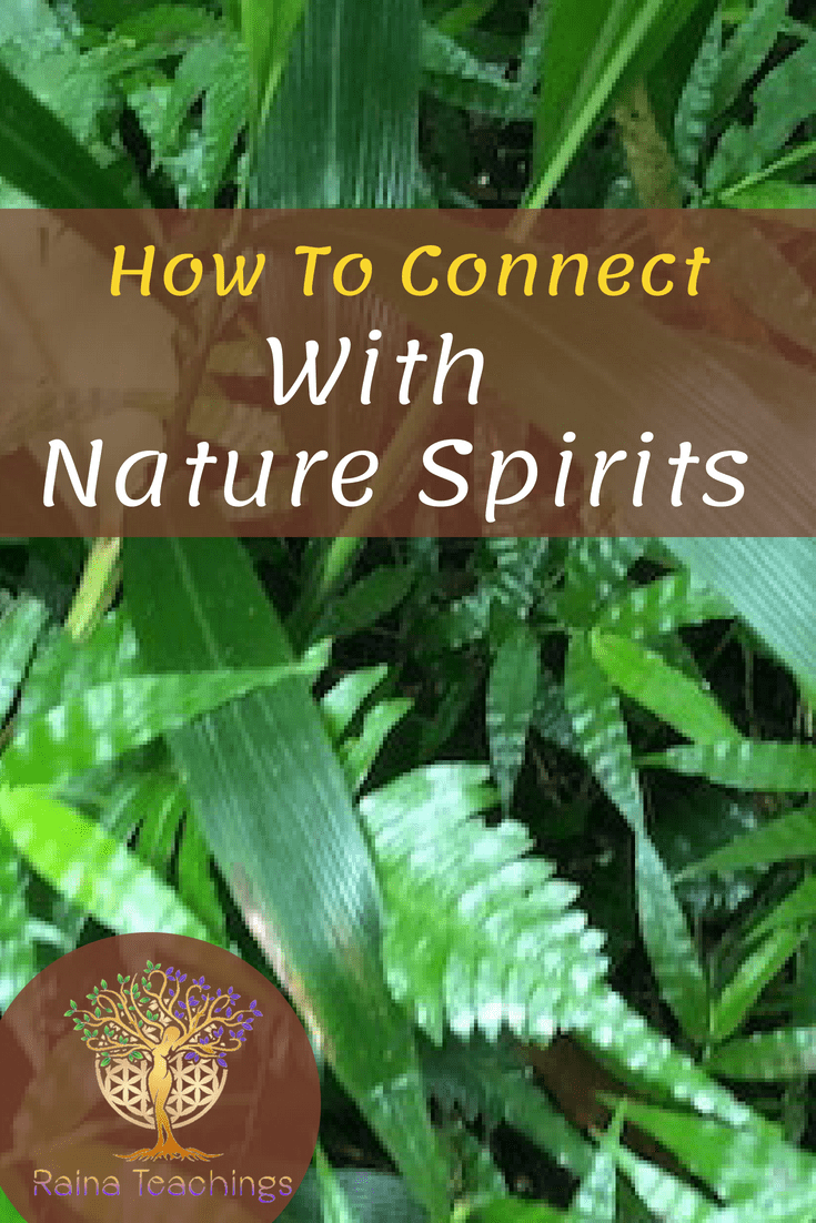 How To Connect With Nature Spirits